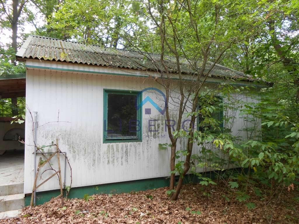 Działka budowlana na sprzedaż Arciechów  2900m2 Foto 7