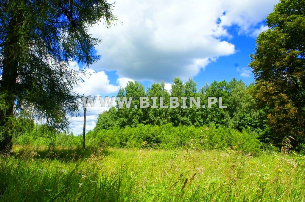 Działka rolna na sprzedaż Szczebra  6341m2 Foto 5