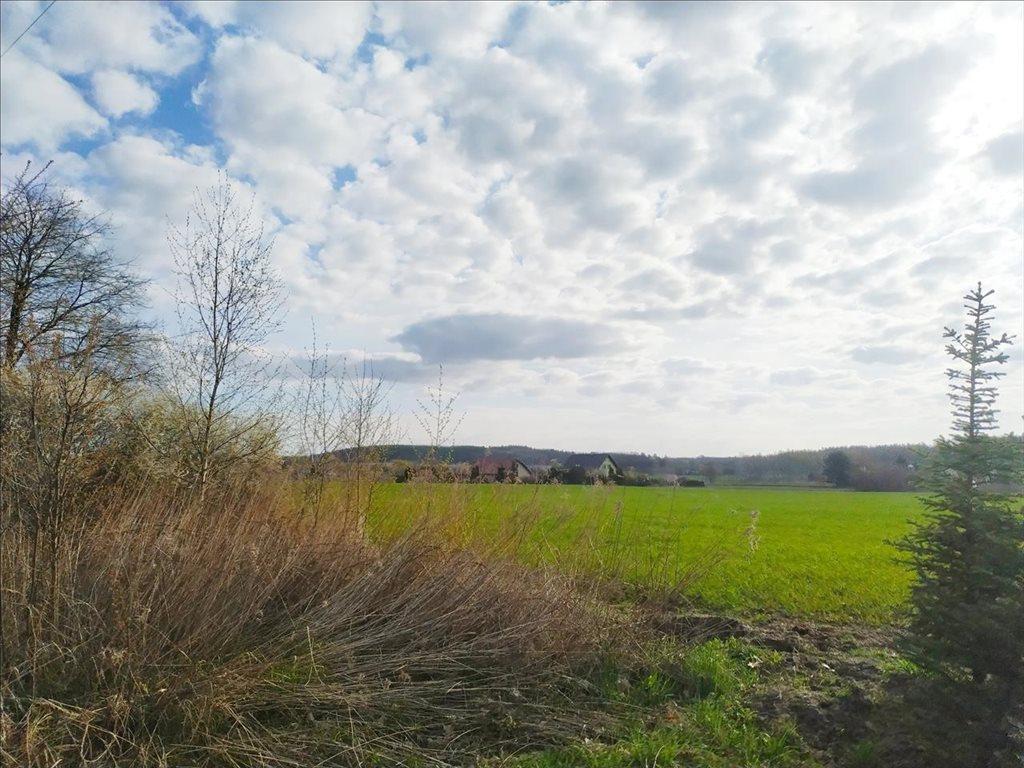 Działka rolna na sprzedaż Rościsławice, Oborniki Śląskie  15861m2 Foto 6