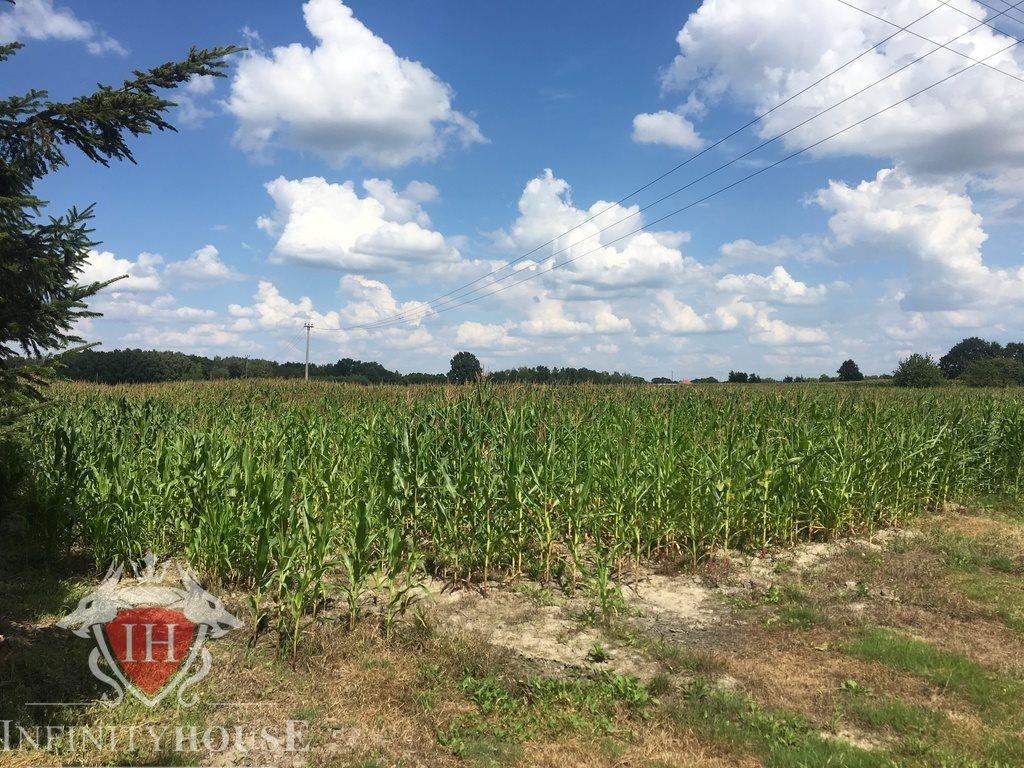 Działka rolna na sprzedaż Nowe Paski  200000m2 Foto 1
