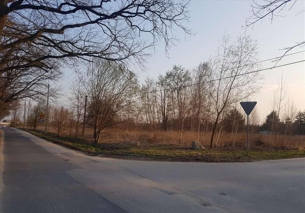 Działka przemysłowo-handlowa na sprzedaż Stara Wieś  10000m2 Foto 1