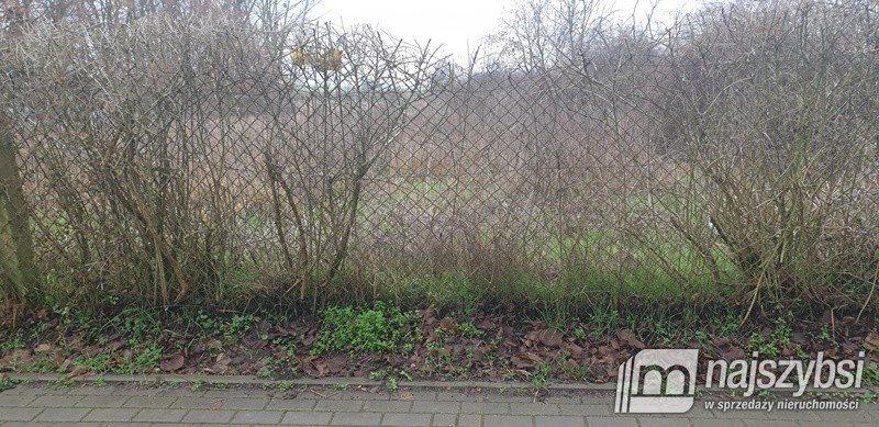 Działka inna na sprzedaż Kołbaskowo, Centrum  2930m2 Foto 13
