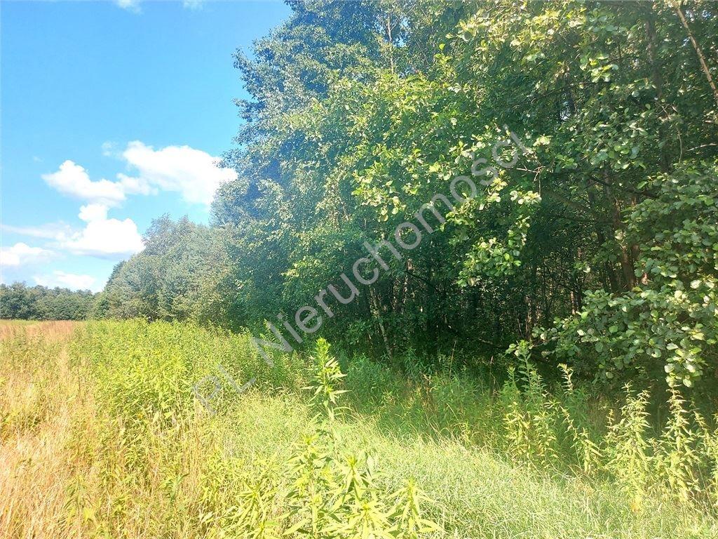 Działka rolna na sprzedaż Choiny  60500m2 Foto 3