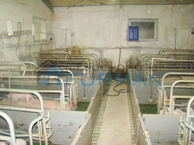 Lokal użytkowy na sprzedaż Ostrówki  6736m2 Foto 9