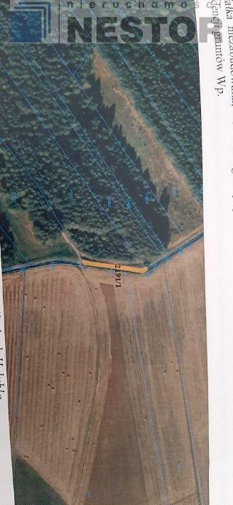 Działka leśna na sprzedaż Hołubla  25700m2 Foto 5