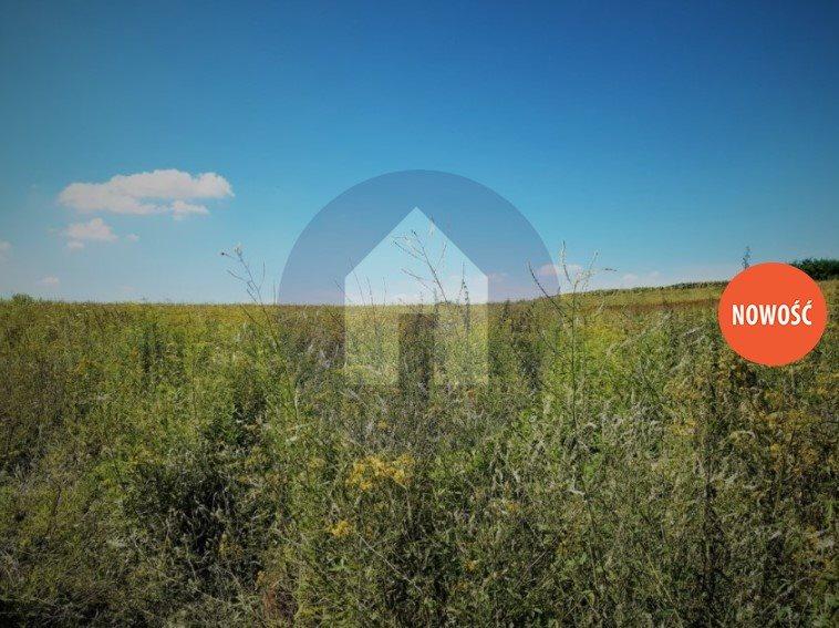 Działka komercyjna na sprzedaż Marcinowice  5950m2 Foto 2