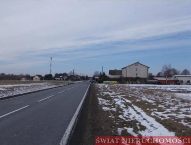 Działka budowlana na sprzedaż Skoroszów  6300m2 Foto 4