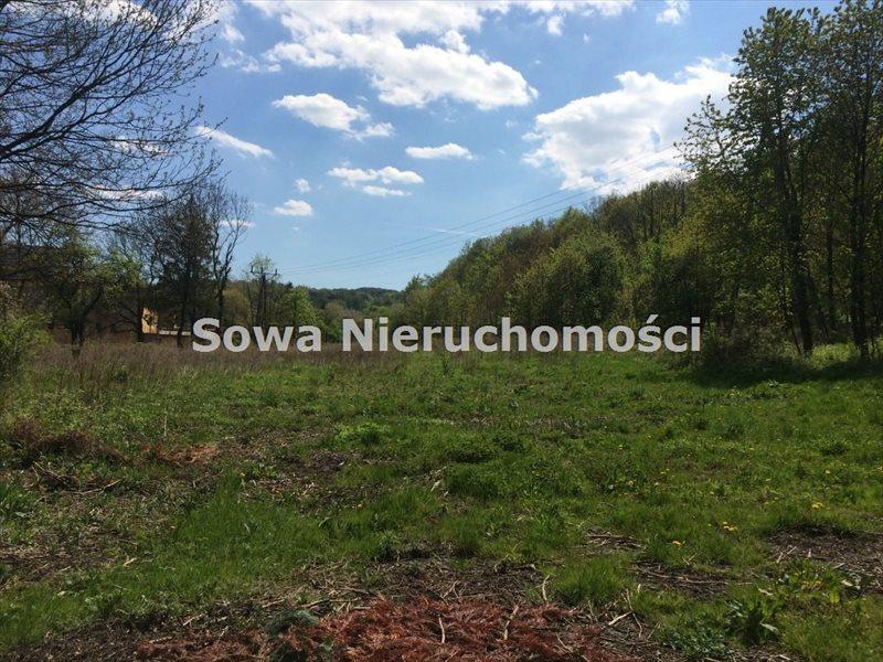 Działka inna na sprzedaż Świebodzice, Pełcznica  13000m2 Foto 1