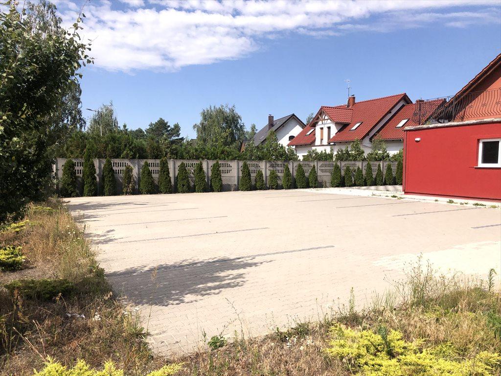 Dom na wynajem Dąbrowa  260m2 Foto 4