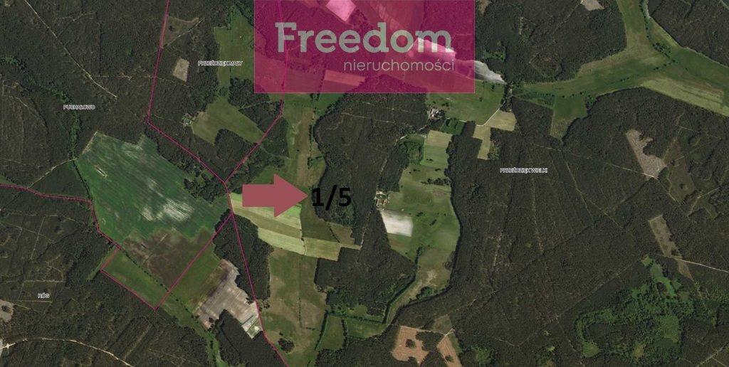 Działka leśna na sprzedaż Przeździęk Wielki  95497m2 Foto 2