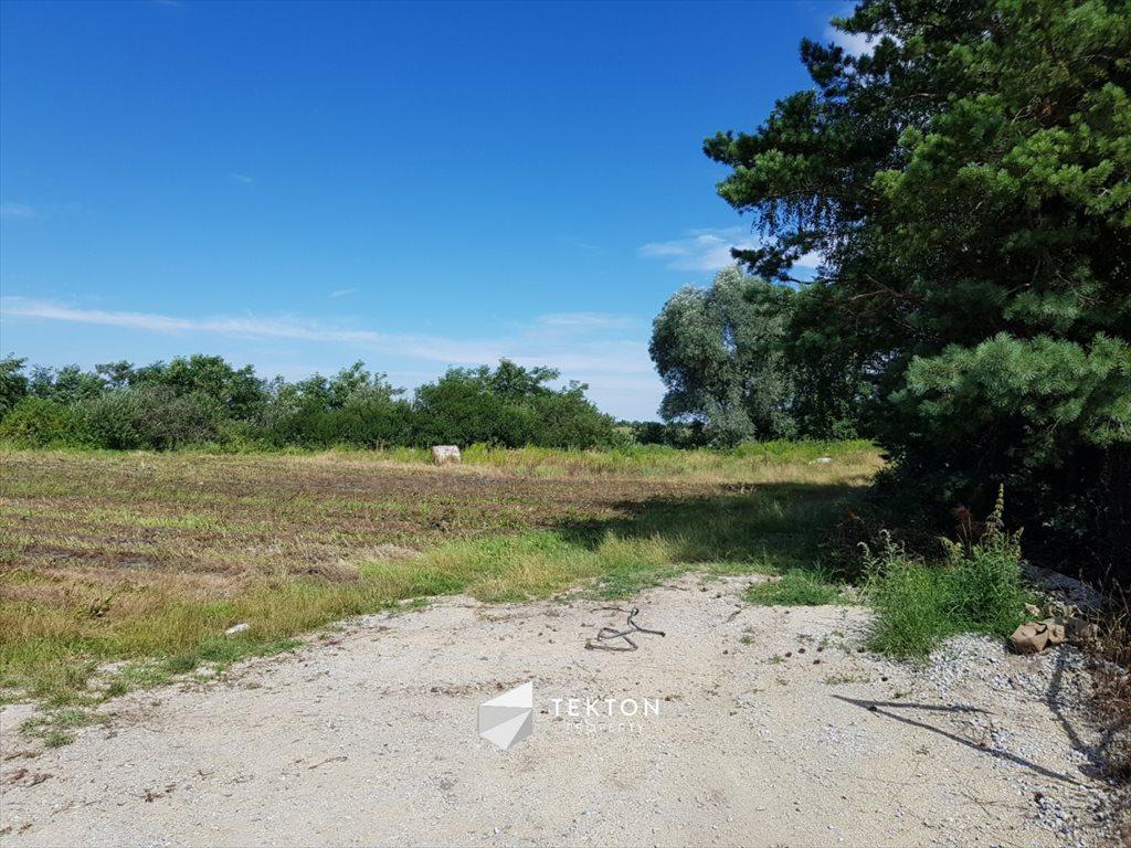 Działka rolna na sprzedaż Mokronos Dolny, Morelowa  3000m2 Foto 6