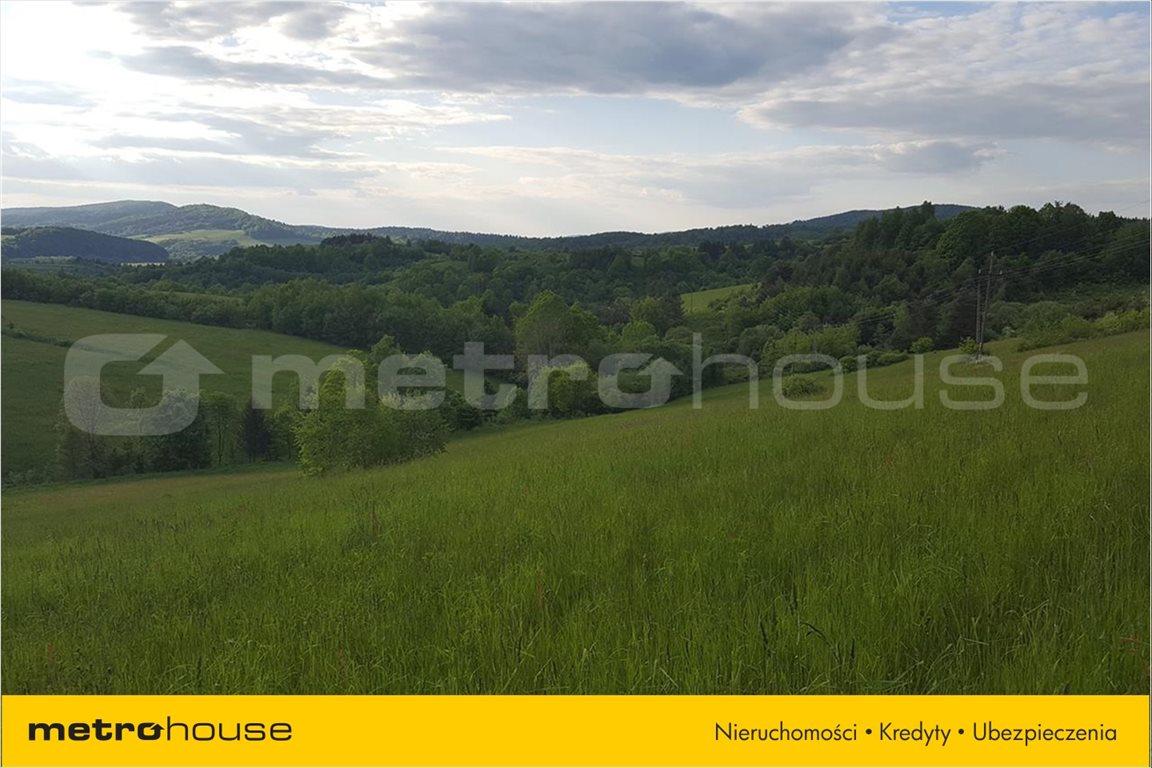 Działka rolna na sprzedaż Średnia Wieś, Lesko  12340m2 Foto 4