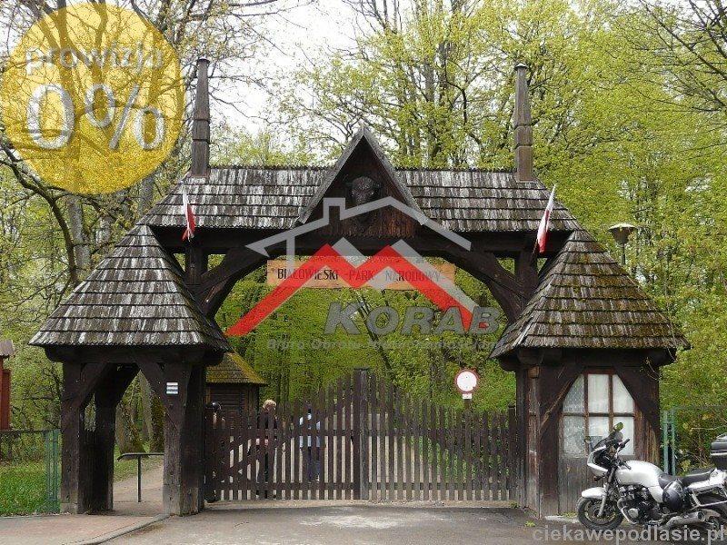 Działka inwestycyjna na sprzedaż Białowieża, Białowieża  3000m2 Foto 1