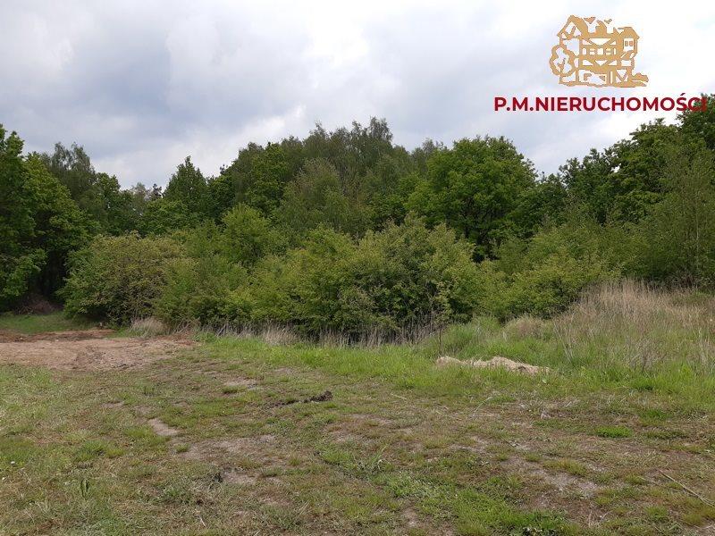 Działka rolna na sprzedaż Jankowice Rybnickie  1150m2 Foto 2