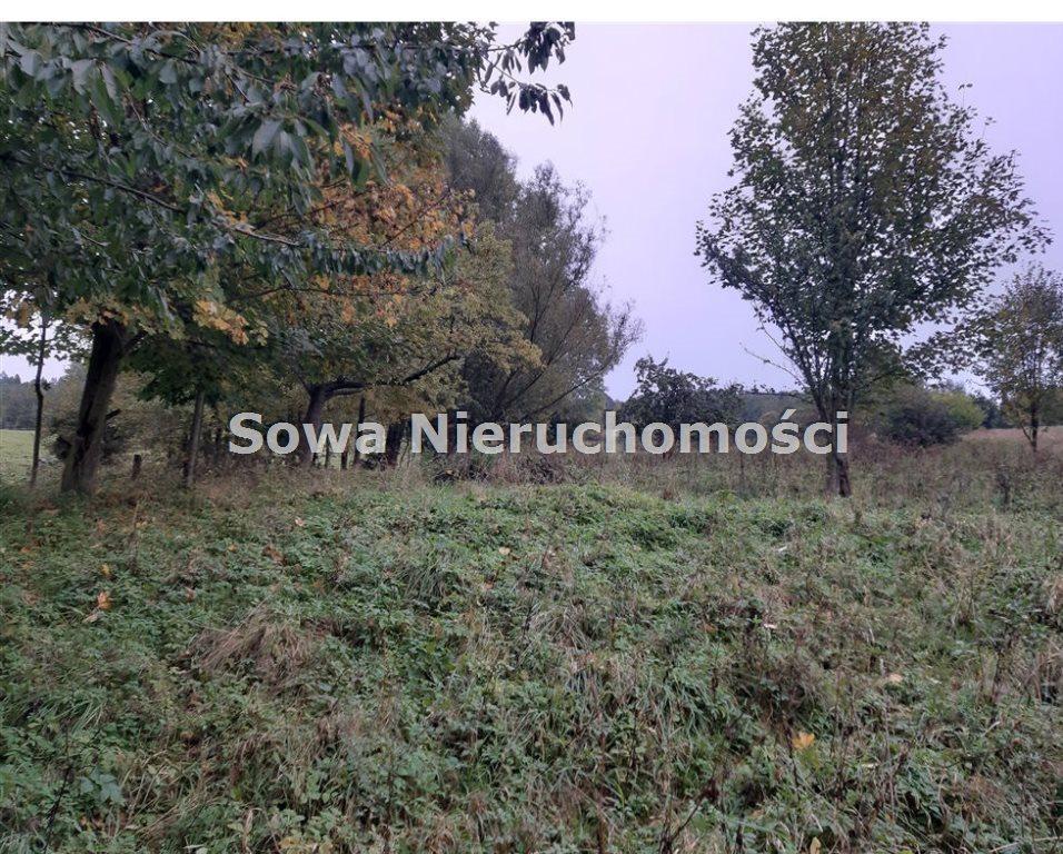 Działka inna na sprzedaż Michałkowa  2259m2 Foto 3