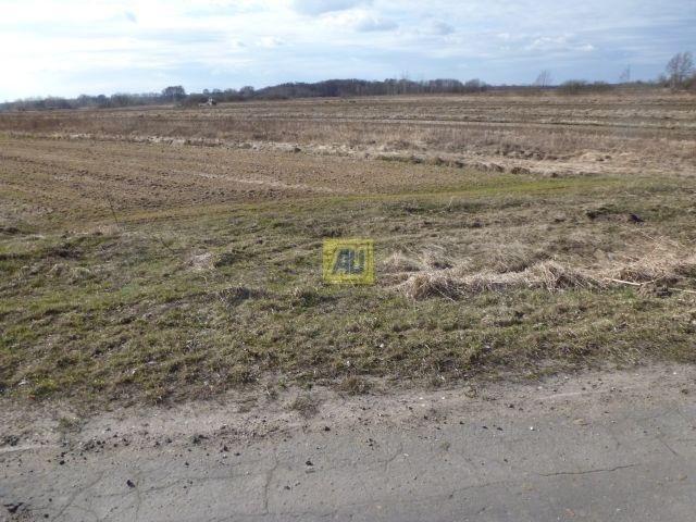 Działka rolna na sprzedaż Konstancin Jeziorna, Bielawa  3900m2 Foto 2