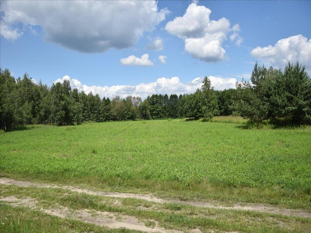 Działka rolna na sprzedaż Kuźniczysko, Trzebnica  6900m2 Foto 1