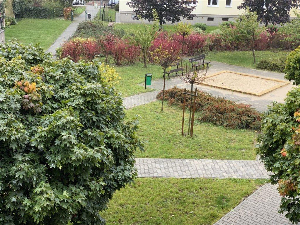 Mieszkanie dwupokojowe na wynajem Poznań, Stare Miasto, Winogrady, Os. Powstańców Warszawy  55m2 Foto 5