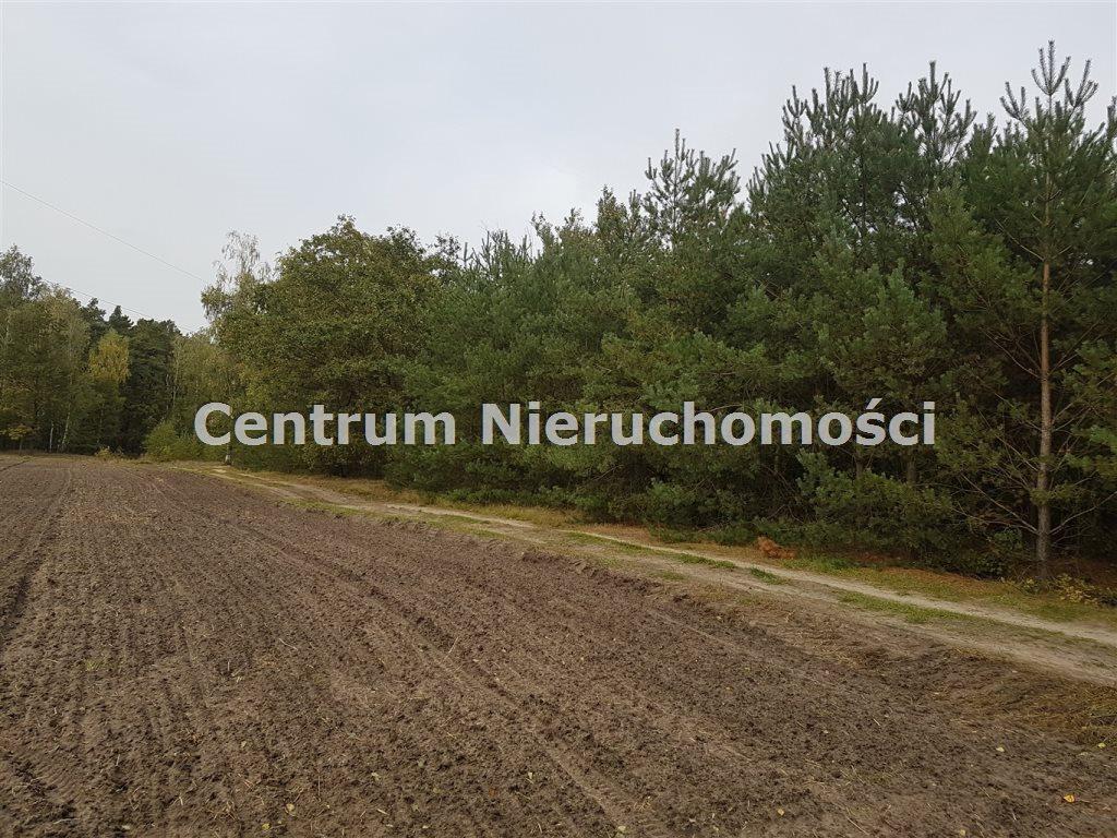 Działka leśna na sprzedaż Bałdrzychów  21000m2 Foto 2