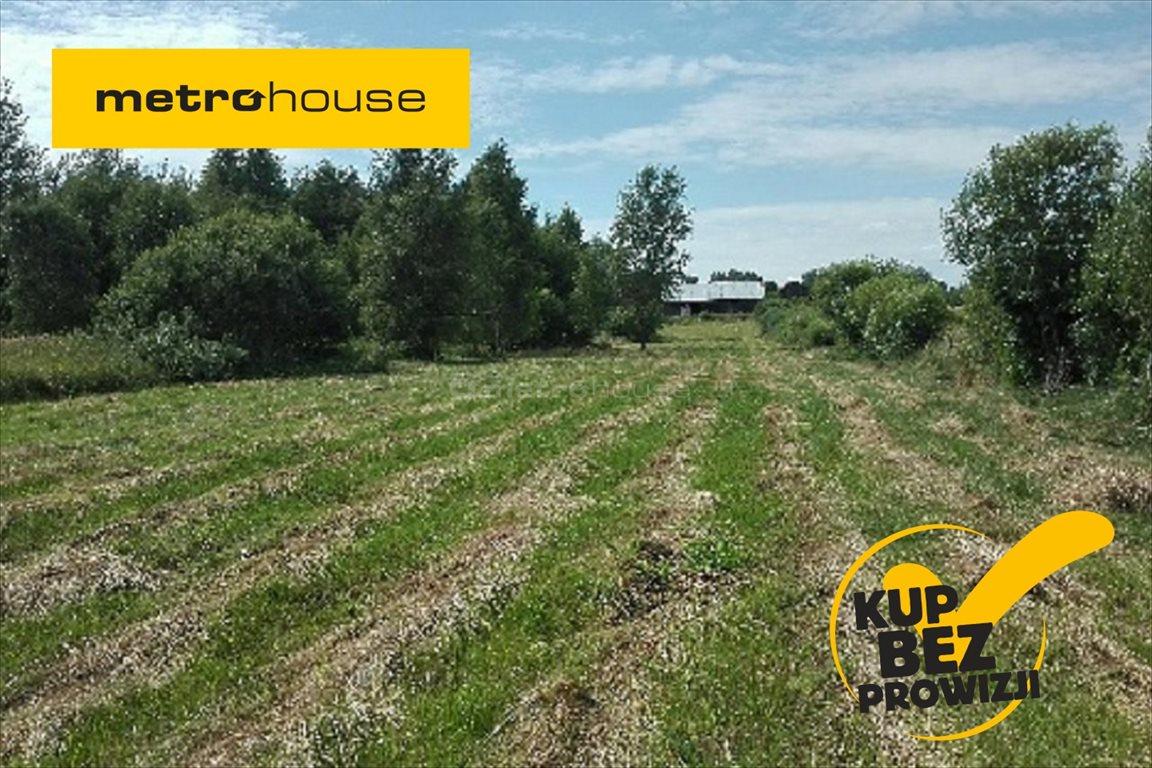 Działka rolna na sprzedaż Pierwągi, Jeziorany  5000m2 Foto 1