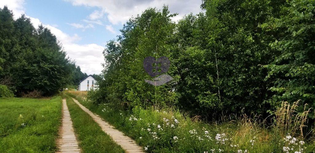 Działka inna na sprzedaż Studzianki, Wasilkowska  3536m2 Foto 4