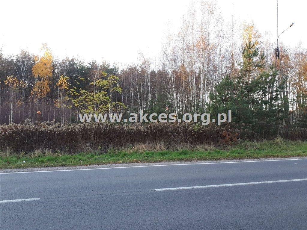 Działka leśna na sprzedaż Nowy Prażmów  17600m2 Foto 3