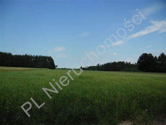 Działka rolna na sprzedaż Stanisławów  4567m2 Foto 2