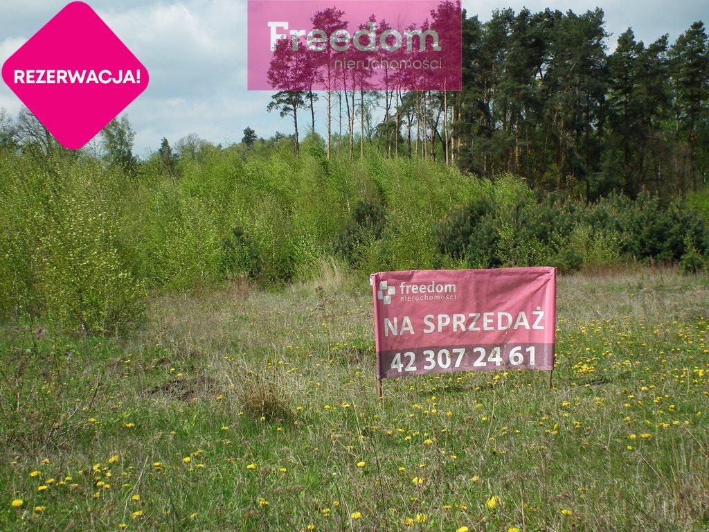 Działka budowlana na sprzedaż Poddębice  3081m2 Foto 1