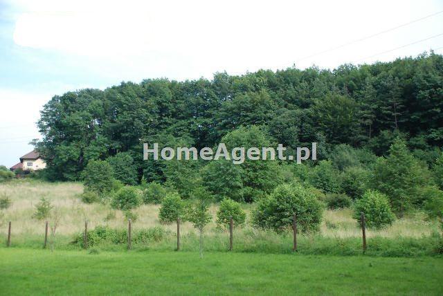 Działka budowlana na sprzedaż Wieliczka  5200m2 Foto 2