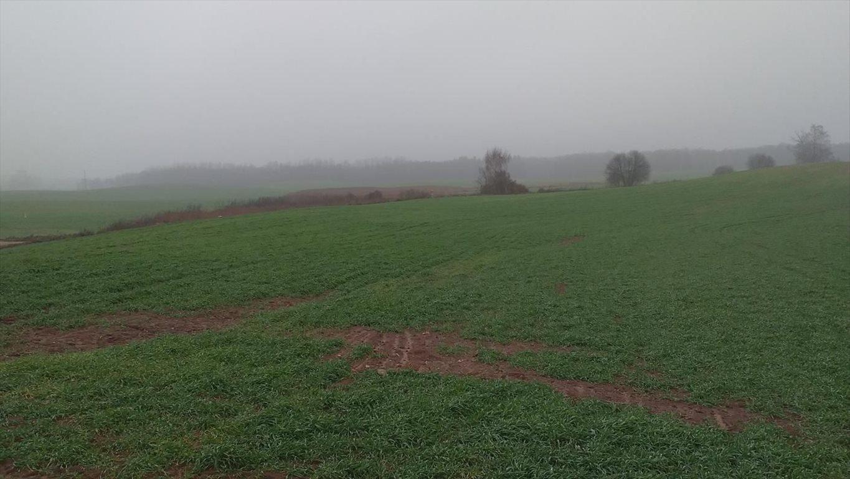Działka gospodarstwo rolne na sprzedaż Koryciny  7000000m2 Foto 6