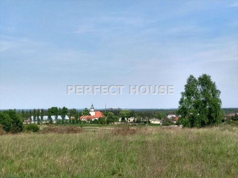 Działka budowlana na sprzedaż Poznań, Morasko  4942m2 Foto 4