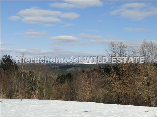 Działka rolna na sprzedaż Lesko, Lesko  4225m2 Foto 4