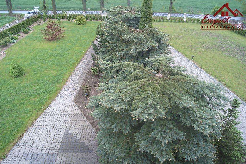 Dom na sprzedaż Kamień Duży  350m2 Foto 10