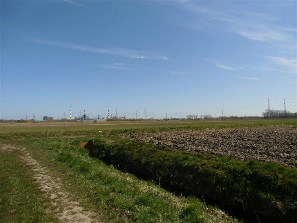 Działka rolna na sprzedaż Gdańsk, Tama Pędzichowska  300000m2 Foto 1