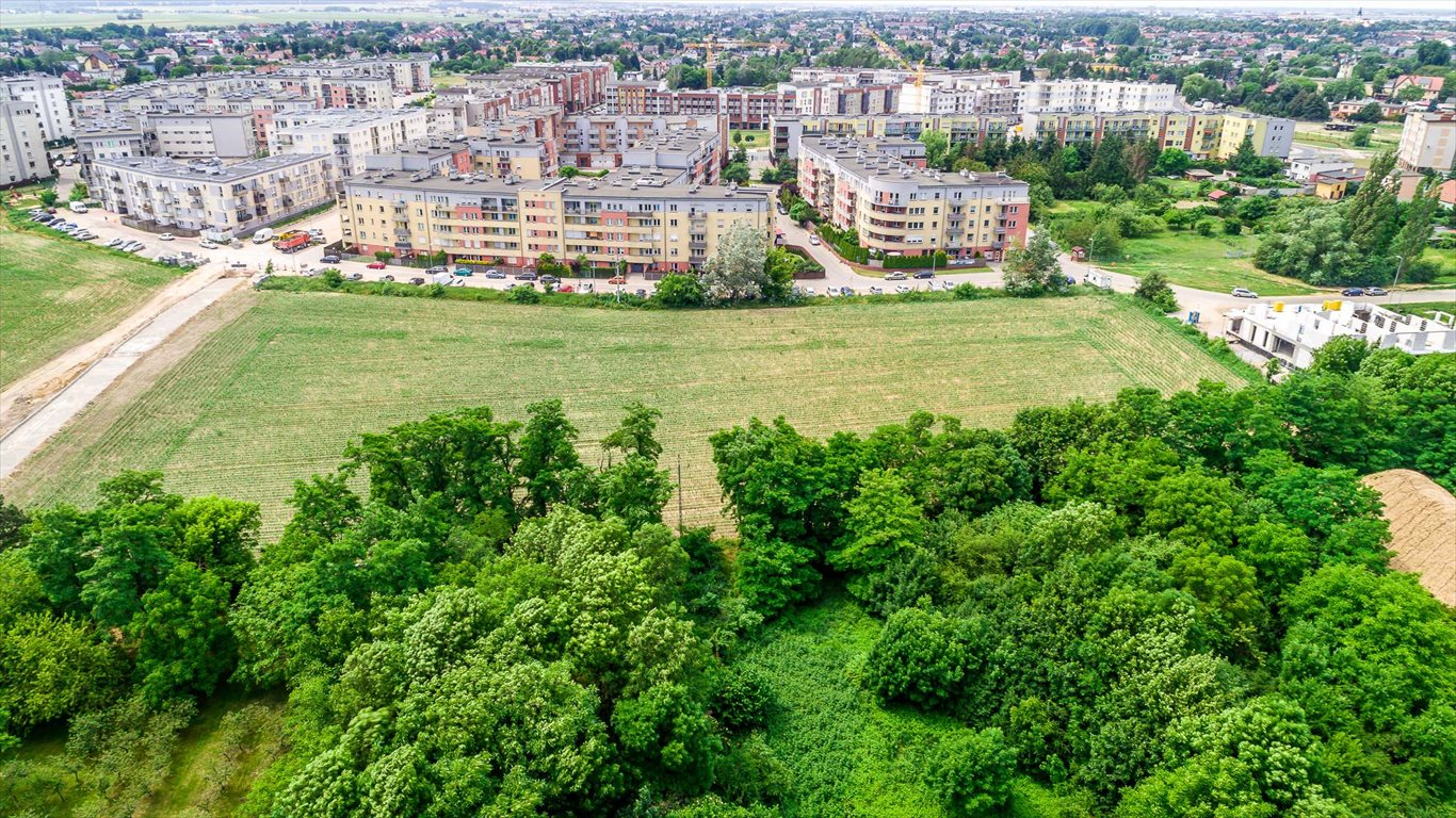 Lokal użytkowy na sprzedaż Luboń  7450m2 Foto 1