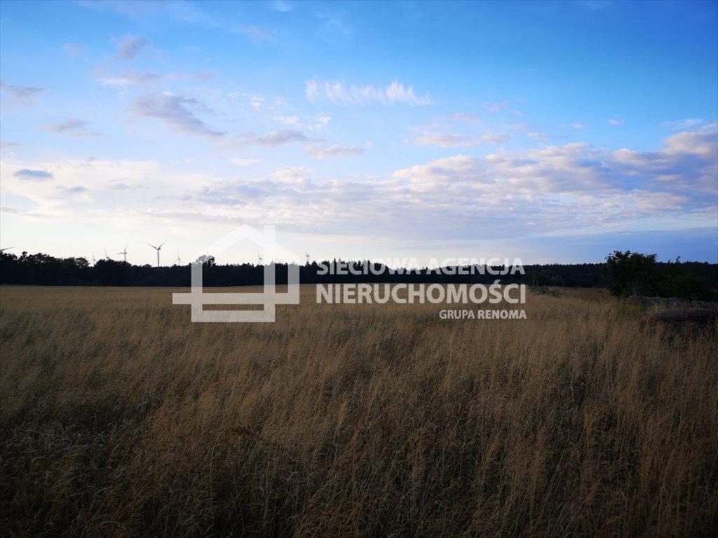 Działka rolna na sprzedaż Białogarda  148300m2 Foto 1