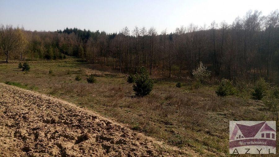 Działka rolna na sprzedaż Lubcza  5000m2 Foto 4