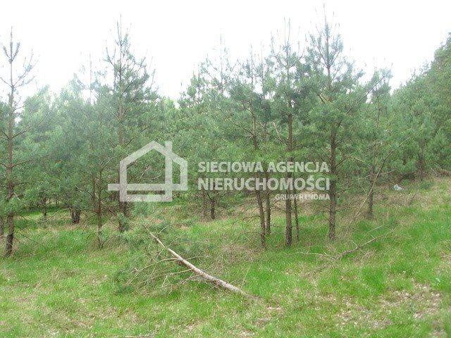 Działka siedliskowa na sprzedaż Miedzno  4564m2 Foto 4
