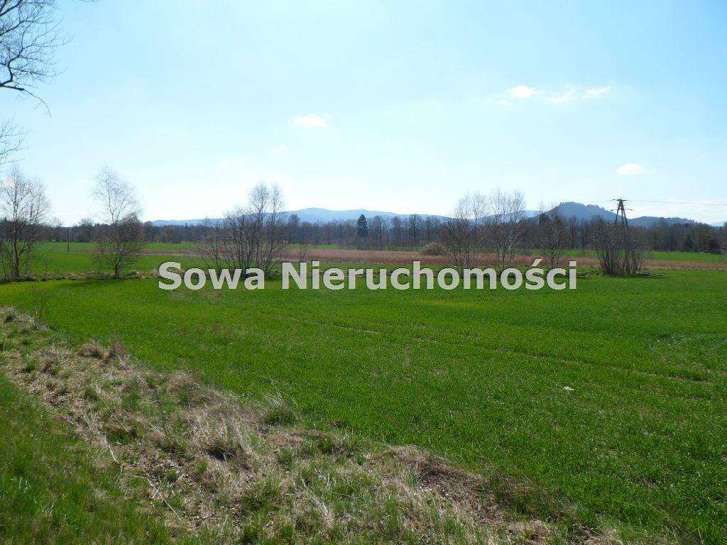 Działka inwestycyjna na sprzedaż Jelenia Góra, Maciejowa  22000m2 Foto 1