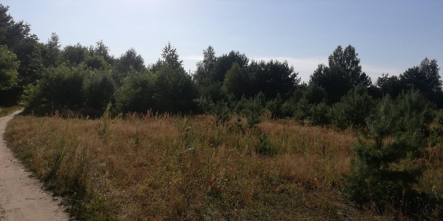 Działka inna na sprzedaż Jazgarzew, Leśna  4500m2 Foto 2