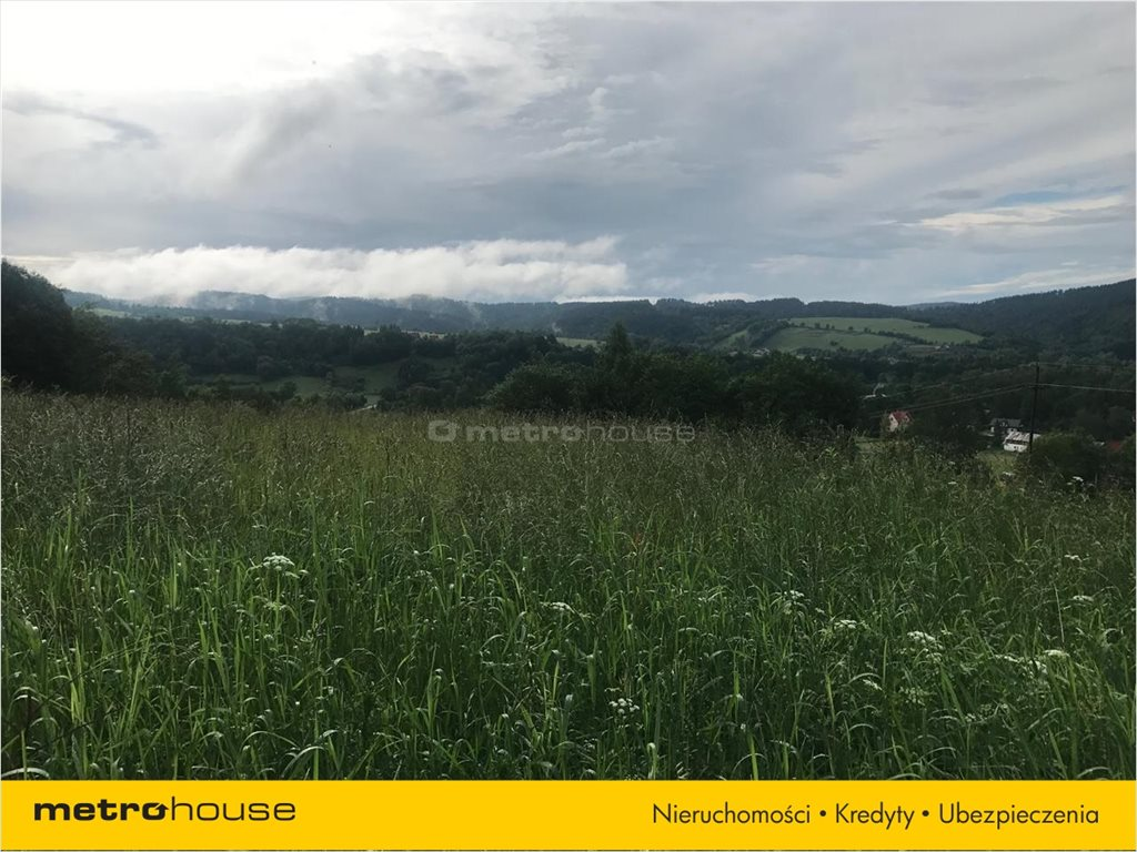 Działka rolna na sprzedaż Bukowiec, Solina  13100m2 Foto 3