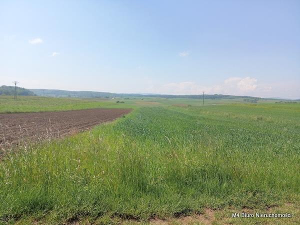 Działka rolna na sprzedaż Łubno Szlacheckie  4700m2 Foto 3