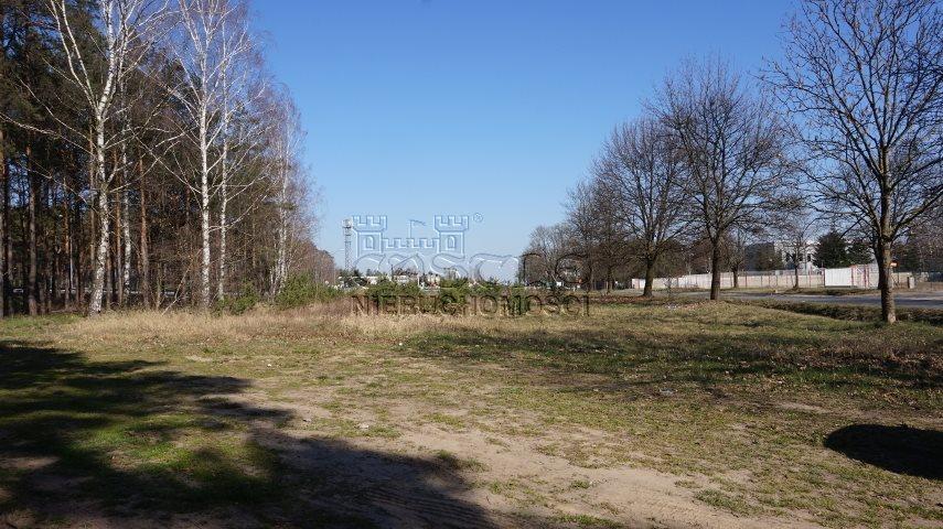 Działka inwestycyjna na sprzedaż Dąbrowa, Bukowska/Pasjonatów  3806m2 Foto 3
