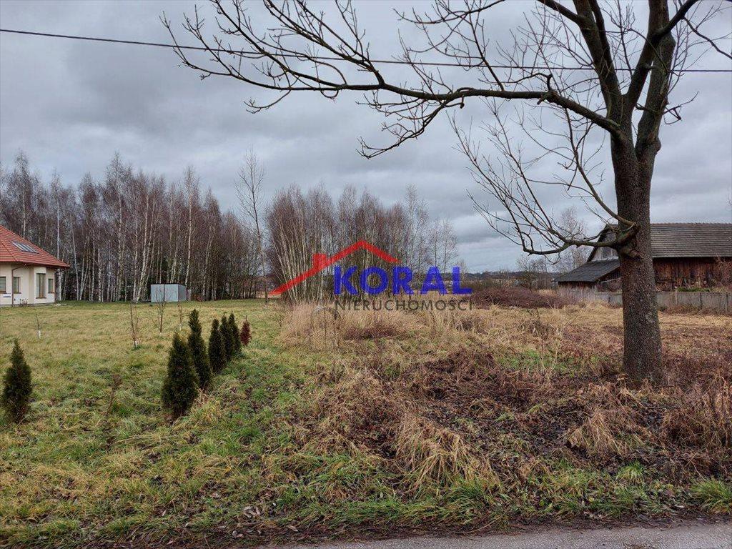 Działka budowlana na sprzedaż Skrzypiów, Skrzypiów - Pińczów  9700m2 Foto 4