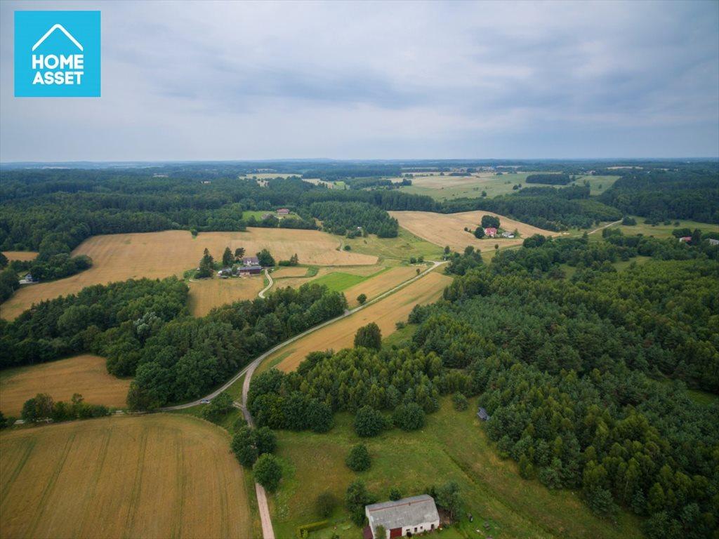 Działka rolna na sprzedaż Błotnia  9300m2 Foto 8