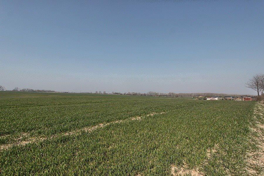 Działka rolna na sprzedaż Siadło Górne  3000m2 Foto 2