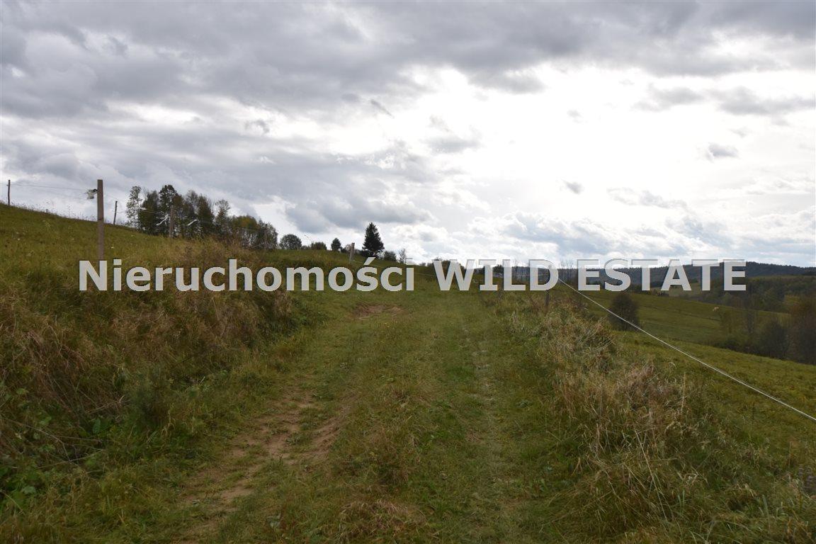 Działka rolna na sprzedaż Solina, Wola Matiaszowa  10329m2 Foto 1