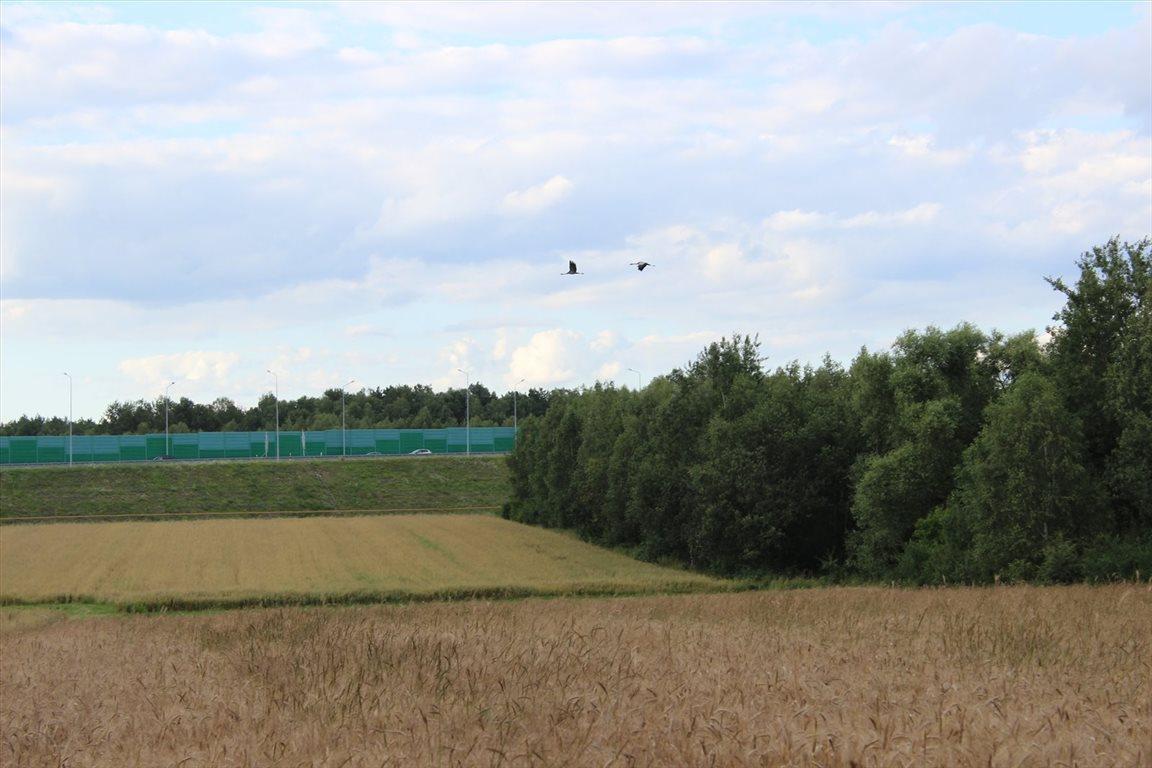 Działka rolna na sprzedaż Choszczówka Stojecka  20900m2 Foto 2