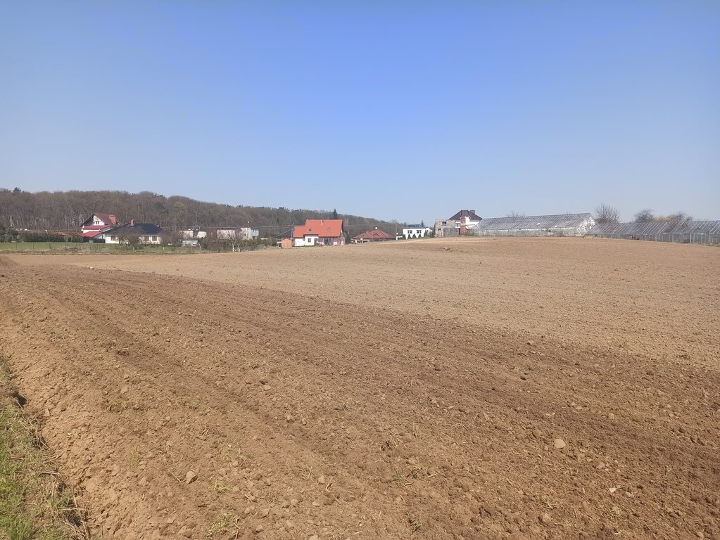 Działka budowlana na sprzedaż Nowa Wieś  1000m2 Foto 6