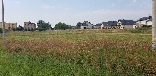 Działka budowlana na sprzedaż Mikołów, Gliwicka  3174m2 Foto 1